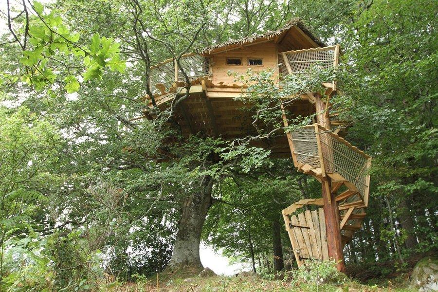 Article hébergement insolite, Guest & Strategy, cabanes dans les arbres