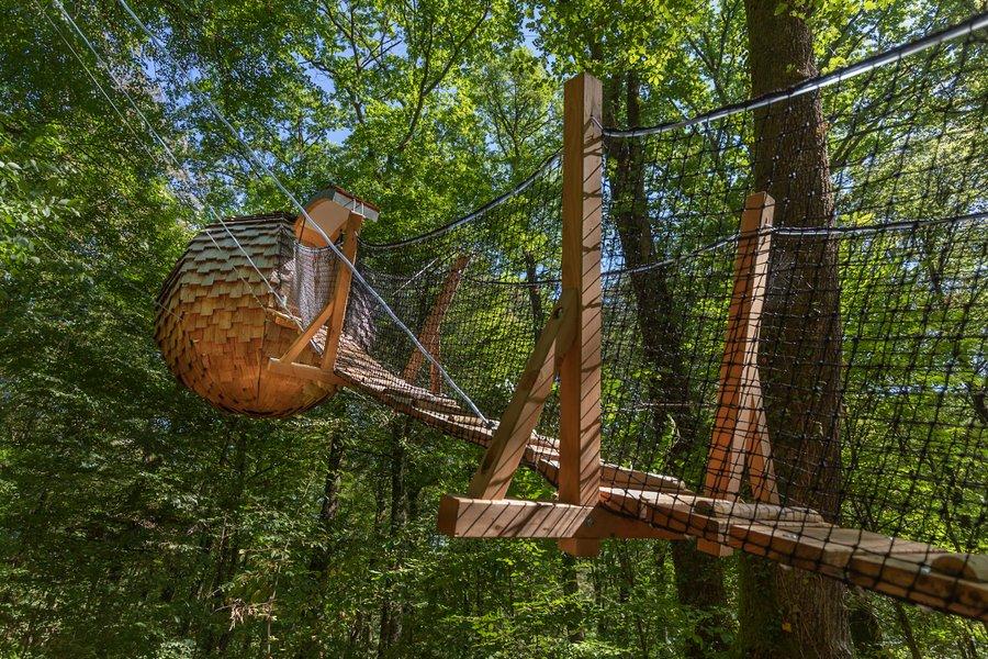Article hébergement insolite, Guest & Strategy, dormir dans un nid